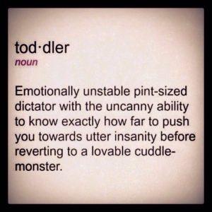 Toddelr definition
